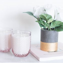DIY Fir & Grapefruit Candle | Twinspiration